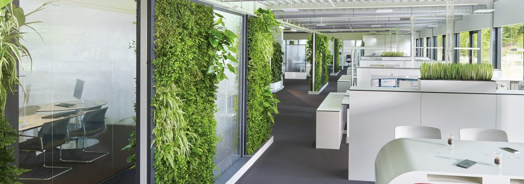 Schadstoffreie Büromöbel und Grünpflanzen verbessern das Raumklima im Büro